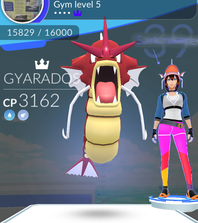 Rare ruby Gyrados next to trainer with matching bright pink pants and Magikarp hat.